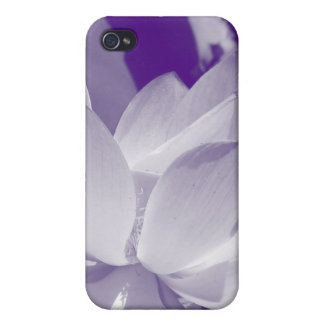 Cubierta púrpura del iPhone del lirio iPhone 4/4S Carcasa
