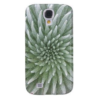 Cubierta suculenta del iPhone del cactus hawaiano