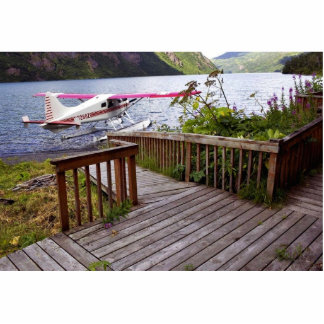 Cubierta y Floatplane de la cabina del lago USUgan Fotoescultura Vertical