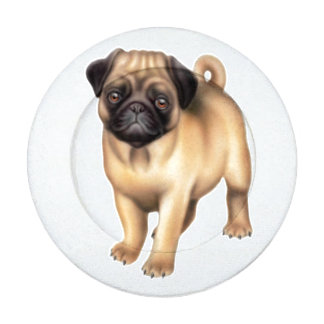Cubiertas amistosas del botón del perro del barro paquete pequeño de tapa botones