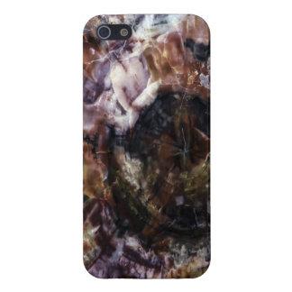Cubiertas de mármol del iPhone 5/5S iPhone 5 Coberturas