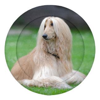 Cubiertas hermosas del botón de la foto del perro paquete grande de tapa botones