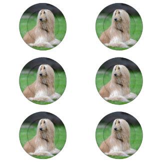 Cubiertas hermosas del botón de la foto del perro paquete pequeño de tapa botones