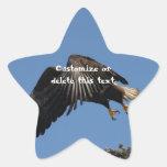 Cubierto por las alas; Personalizable Calcomanías Forma De Estrella Personalizadas