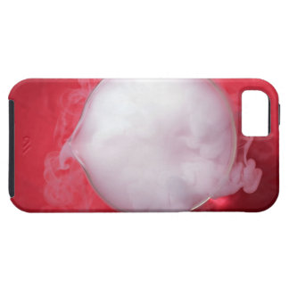 Cubilete iPhone 5 Carcasas