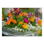 Cubo colorido de flores felicitaciones