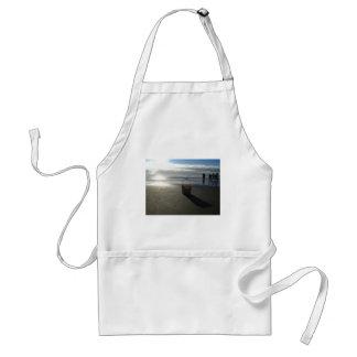 Cubo de la playa delantal