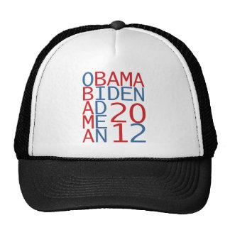 Cubo de Obama - de Biden 2012 Gorra