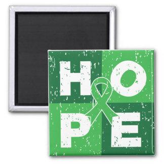 Cubo hepático de la ESPERANZA del cáncer Imanes