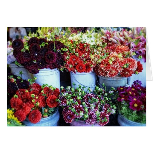 Cubos de flores felicitacion