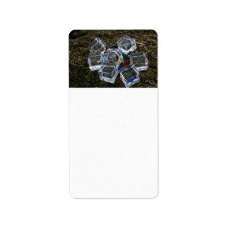 Cubos de hielo y bombillas en la fotografía de la  etiqueta de dirección