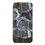 Cubos de hielo y bombillas en la fotografía de la  iPhone 5 cárcasa