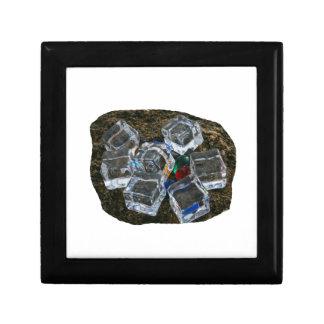 Cubos de hielo y bombillas en la fotografía de la  caja de recuerdo