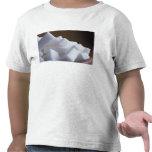 Cubos del azúcar blanco para el uso en los E.E.U.U Camiseta