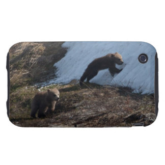 Cubs at Play iPhone 3 Tough Cover