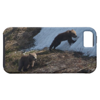 Cubs at Play iPhone SE/5/5s Case