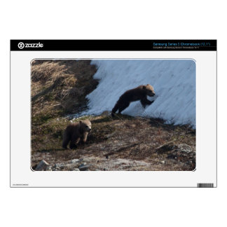 Cubs at Play Samsung Chromebook Decal