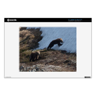 Cubs at Play Skin For Laptop