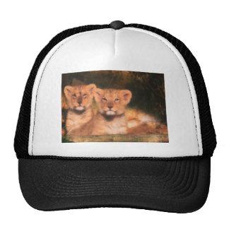 CUBS TRUCKER HAT