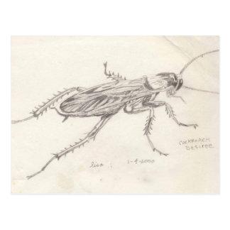Cucaracha Desiree Tarjetas Postales