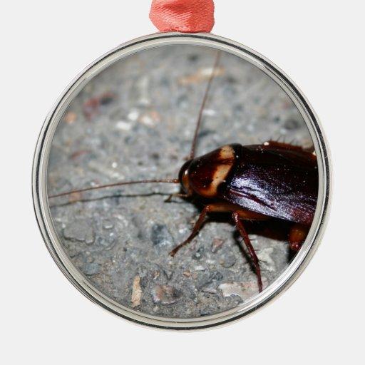 ¡Cucaracha! Ornamento Para Reyes Magos