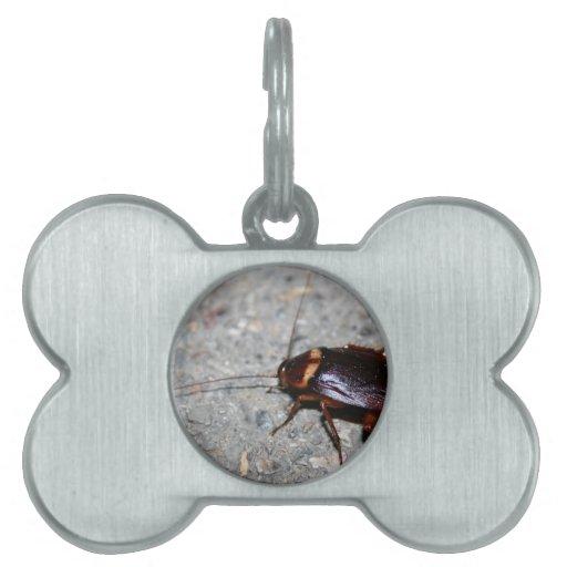 ¡Cucaracha! Placa De Nombre De Mascota