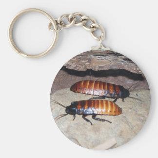 Cucaracha que silba de Madagascar Llavero Redondo Tipo Pin