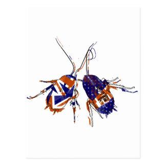 Cucarachas del Ameri-Británico Tarjeta Postal