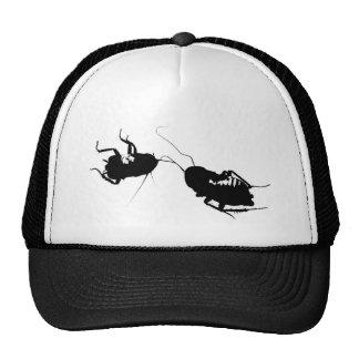 Cucarachas muertas en el gorra del camionero
