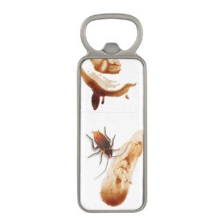 Cucarachas trepadores pegajosas Icky de BugZeez™ Abrebotellas Magnético