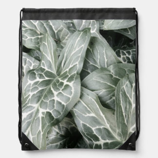 Cuckoo Pint Leaves In Black And White Drawstring Backpack