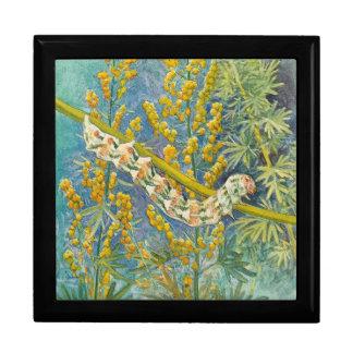 Cucullia Absinthii Caterpillar Jewelry Box