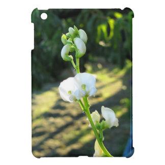 Cucumber flower in a greenhouse iPad mini covers