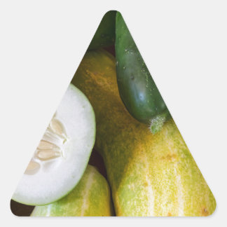 Cucumber Seeds Triangle Sticker