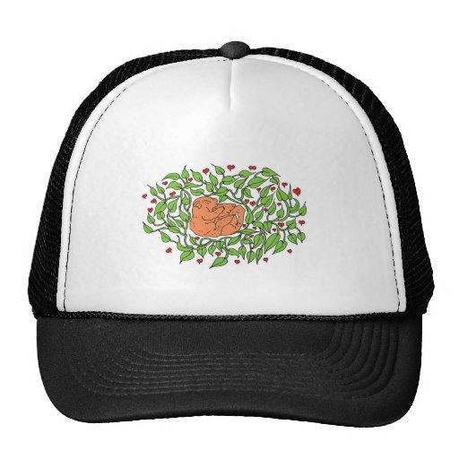 Cuddle Hats