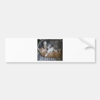 Cuddle Kitties Bumper Sticker