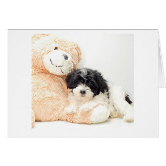 CUDDLE TIME-NEW BABY CONGRATS GREETING CARD