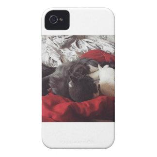 Cuddling Cats iPhone 4 Case