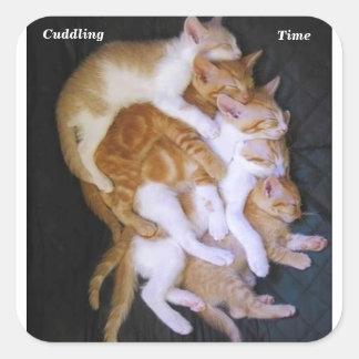 cuddling cats square sticker