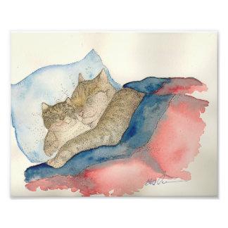 Cuddling Mother and baby kitten Art Print Photo Print