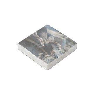 Cuddling Otters Stone Magnet