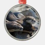Cuddling Otters Metal Ornament