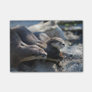 Cuddling Otters Post-it® Notes