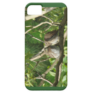 Cuddling Owls on your Phone iPhone SE/5/5s Case