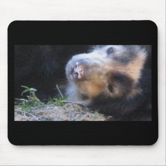 Cuddly Baby Black Bear Mouse Pad