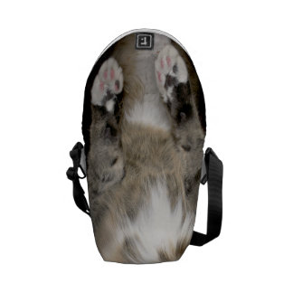 Cuddly Cat Meow Bag (Tabby Version)