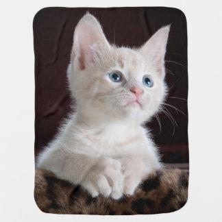 Cuddly Cute Kitten Swaddle Blanket