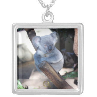 Cuddly Koala Custom Jewelry
