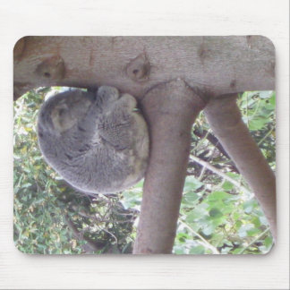 Cuddly Koala Mouse Pad