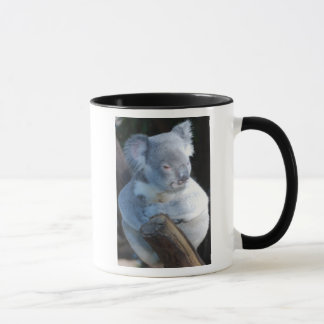 Cuddly Koala Mug